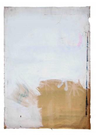 sem-título-2001-acrilico-e-grafite-sobre-papel-56-x-80-cm