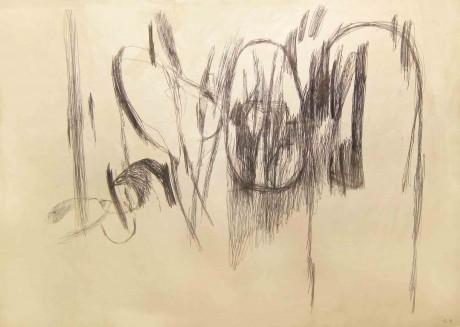 a-nice-garden--2001-esferografica-sobre-papel-30-x-42,5-cm