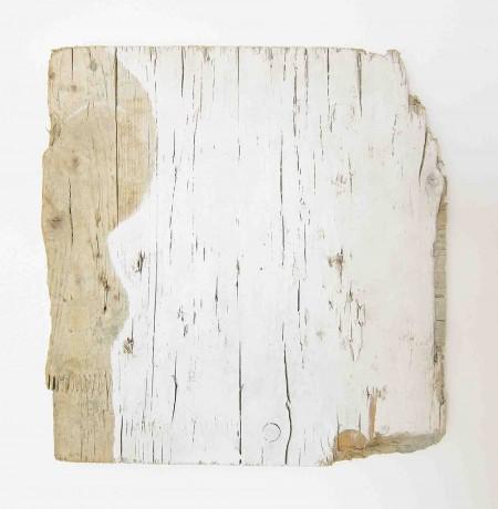 skull-2016-tinta-plastica-sobre-madeira-respigada-40-x-38,5-cm